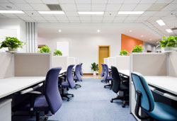 Task Chairs New Port Richey FL